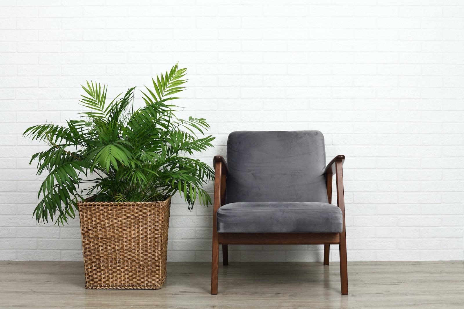 Relaxte stoel